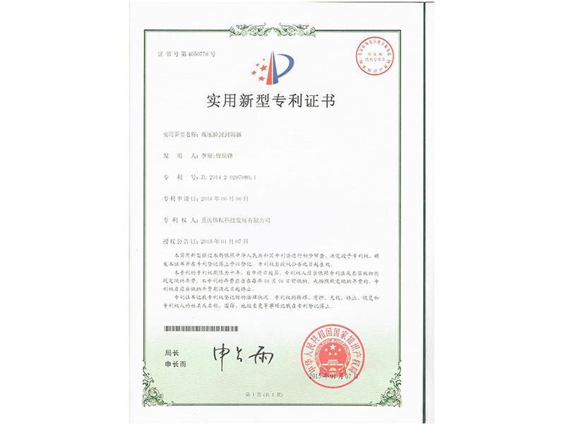 Practical Patent Certificate-1